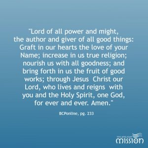 Twelfth Sunday After Pentecost